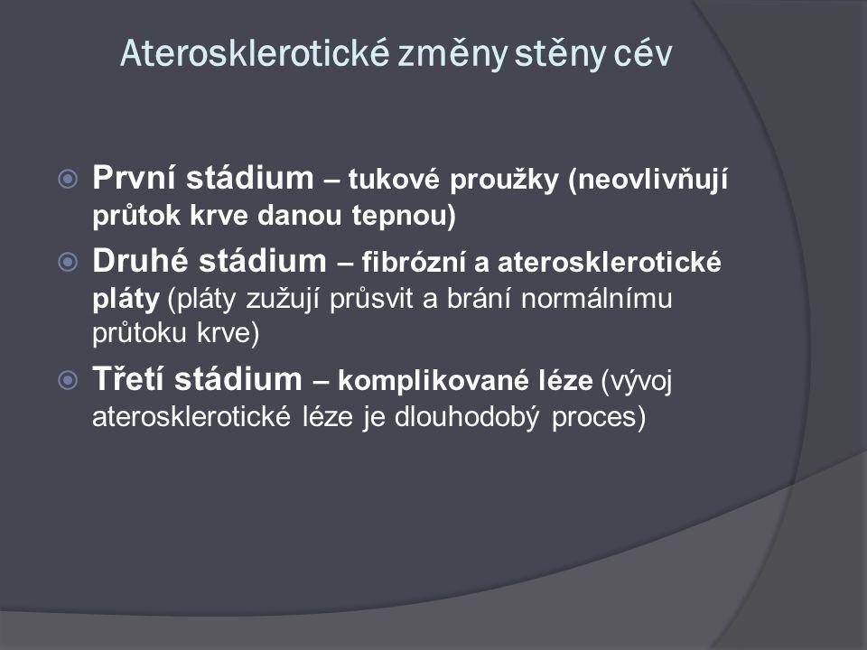 Aterosklerotické změny stěny cév