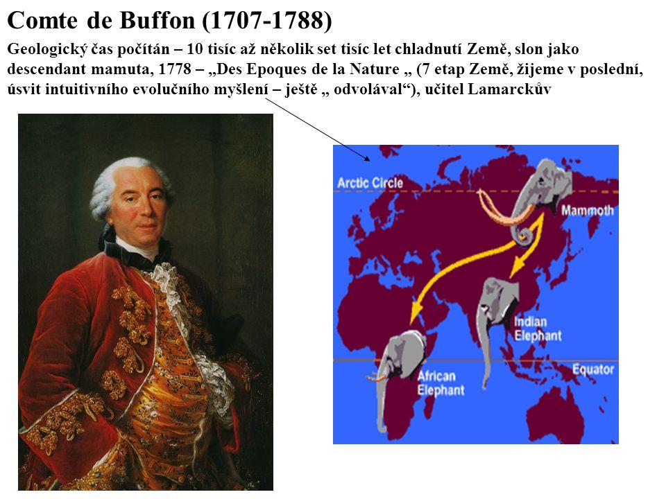 Comte de Buffon (1707-1788) Geologický čas počítán – 10 tisíc až několik set tisíc let chladnutí Země, slon jako.