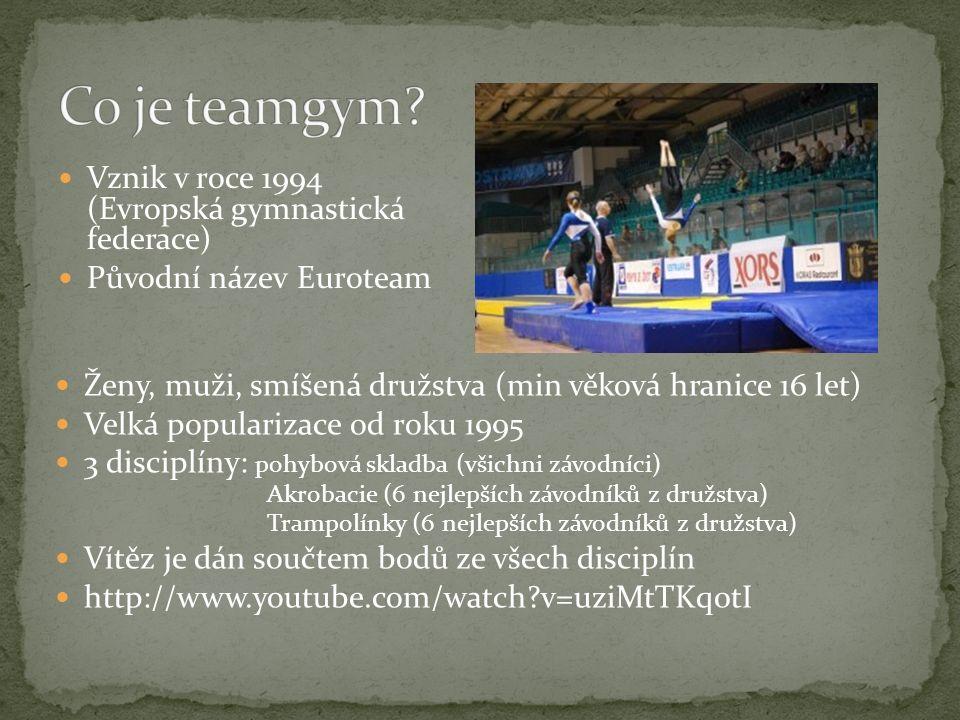 Co je teamgym Vznik v roce 1994 (Evropská gymnastická federace)