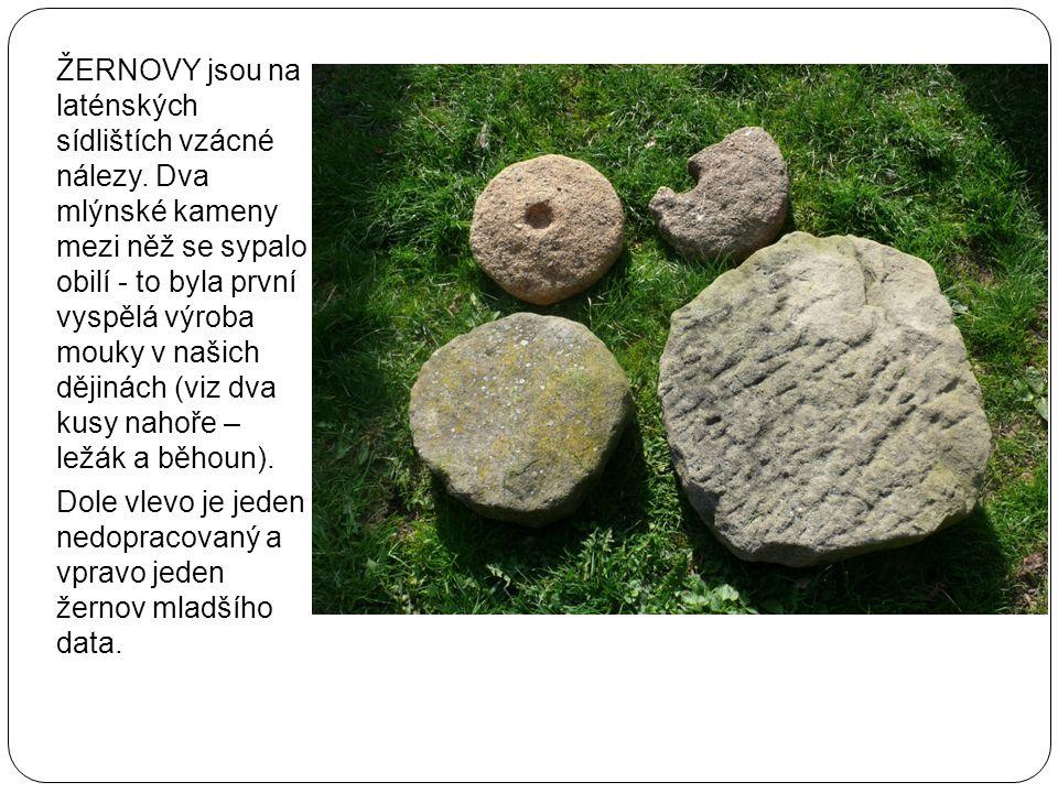ŽERNOVY jsou na laténských sídlištích vzácné nálezy