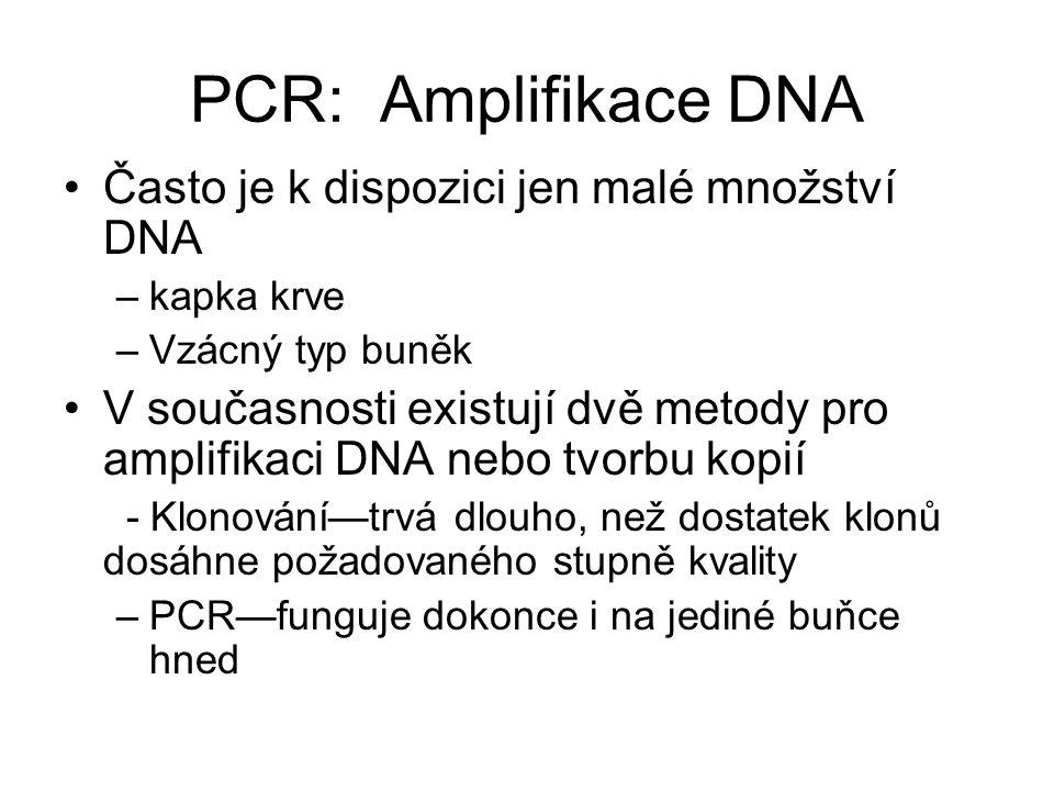 PCR: Amplifikace DNA Často je k dispozici jen malé množství DNA