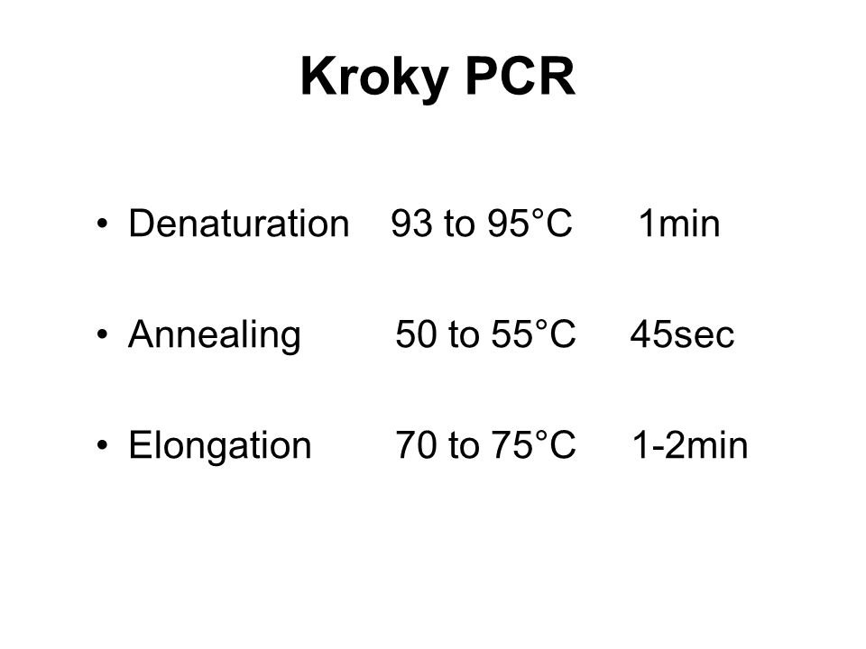 Kroky PCR Denaturation 93 to 95°C 1min Annealing 50 to 55°C 45sec