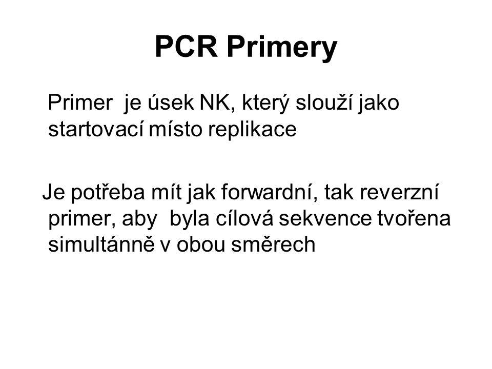 PCR Primery Primer je úsek NK, který slouží jako startovací místo replikace.