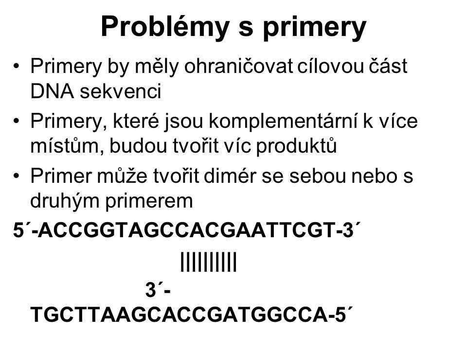 Problémy s primery Primery by měly ohraničovat cílovou část DNA sekvenci.