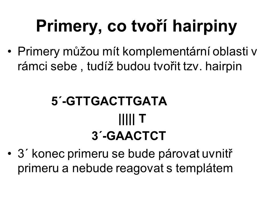 Primery, co tvoří hairpiny