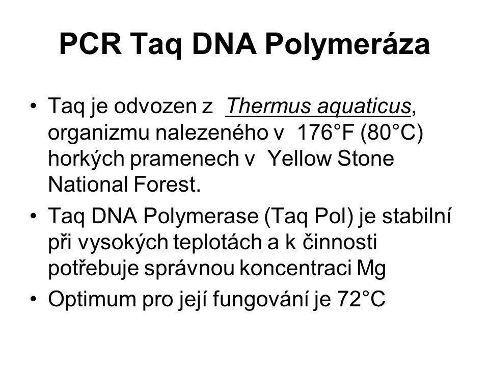 PCR Taq DNA Polymeráza Taq je odvozen z Thermus aquaticus, organizmu nalezeného v 176°F (80°C) horkých pramenech v Yellow Stone National Forest.