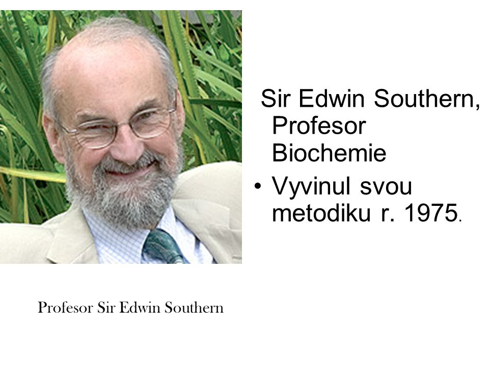 Sir Edwin Southern, Profesor Biochemie