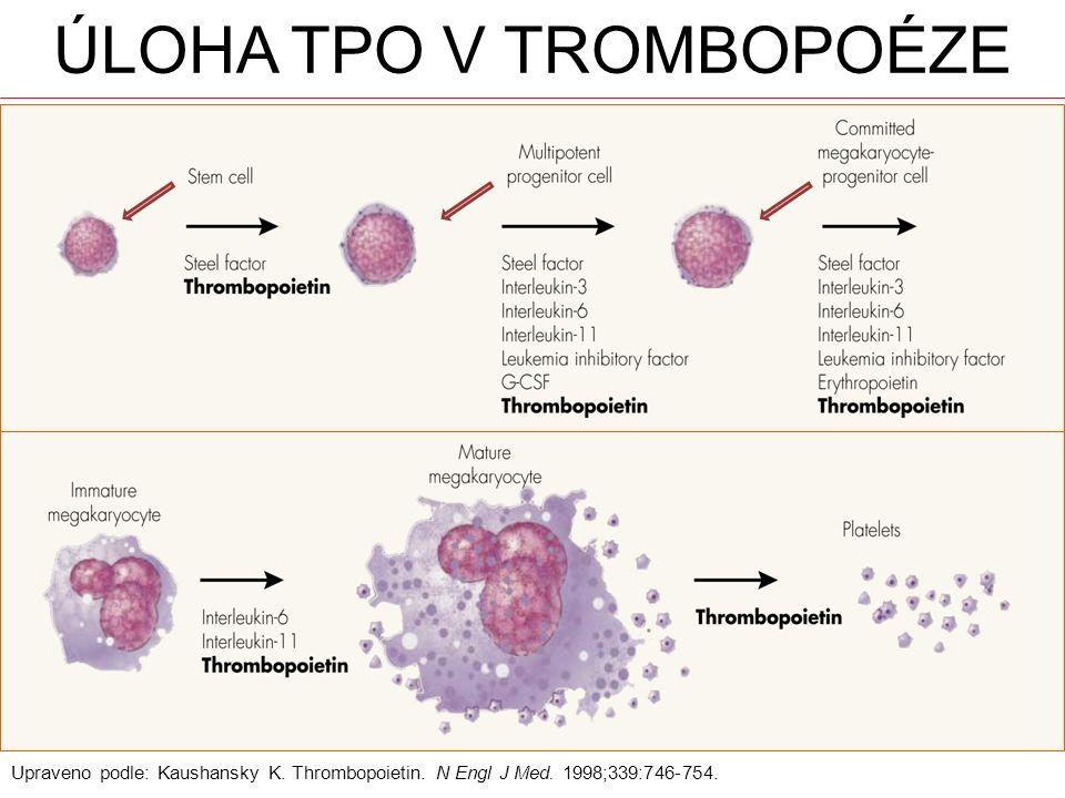 Úloha TPO v trombopoéze