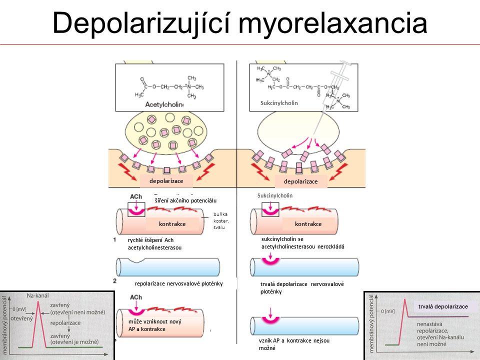 Depolarizující myorelaxancia