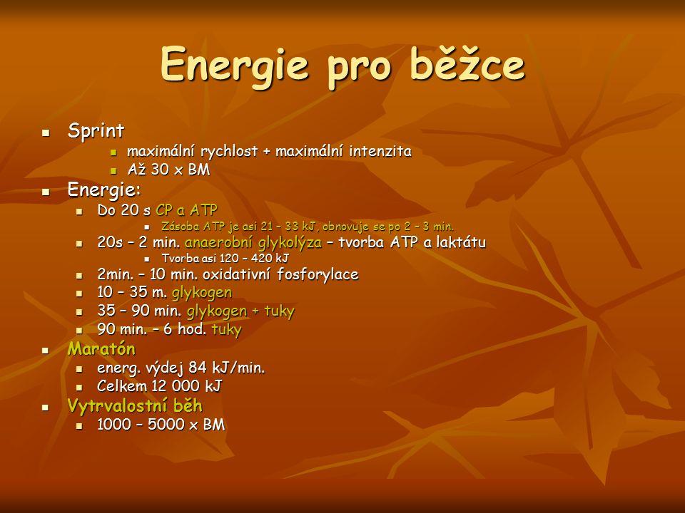 Energie pro běžce Sprint Energie: Maratón Vytrvalostní běh