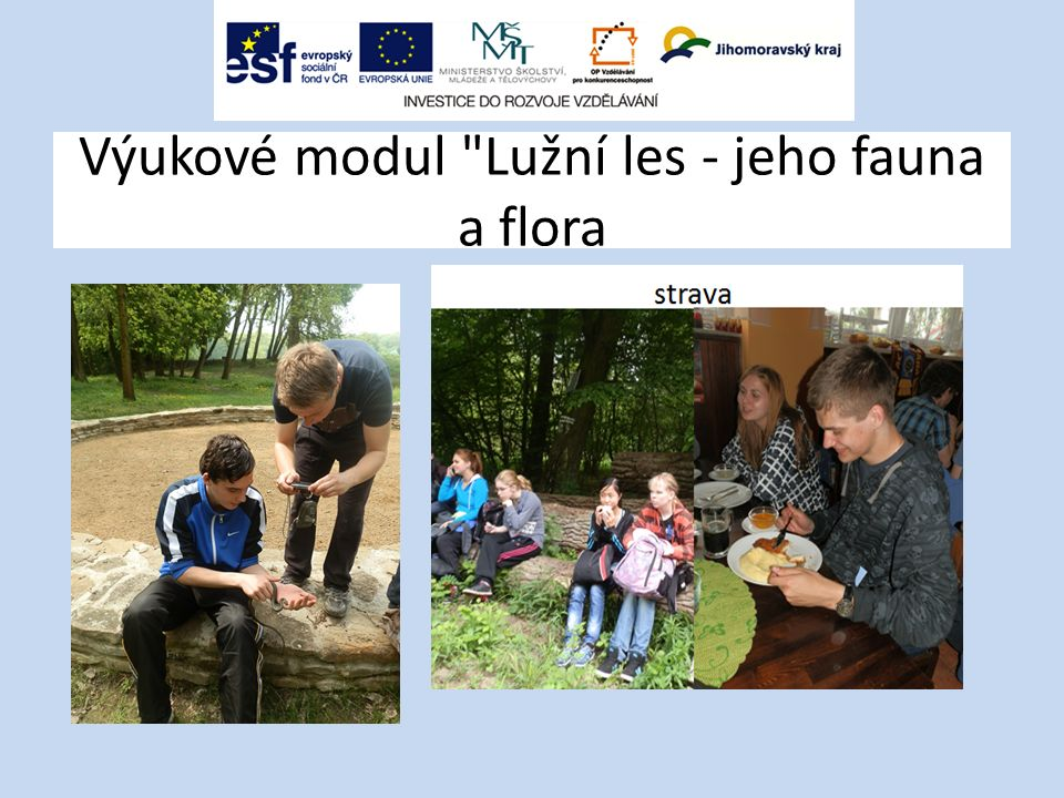 Výukové modul Lužní les - jeho fauna a flora