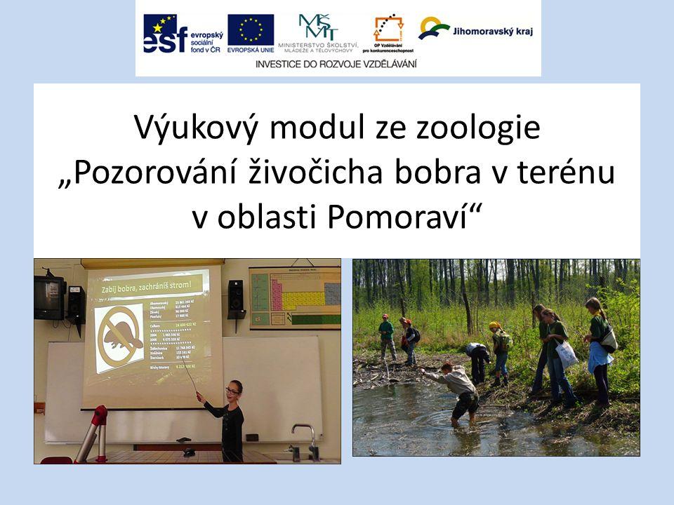 """Výukový modul ze zoologie """"Pozorování živočicha bobra v terénu v oblasti Pomoraví"""