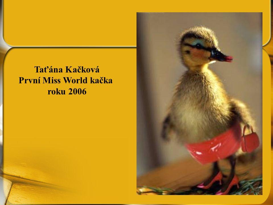 Taťána Kačková První Miss World kačka roku 2006