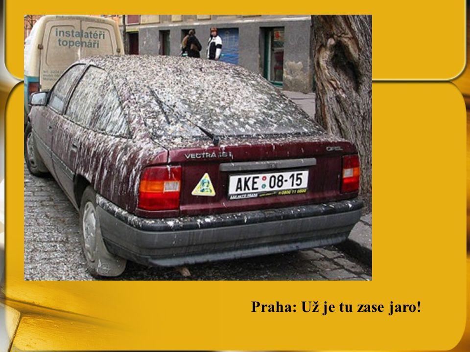 Praha: Už je tu zase jaro!