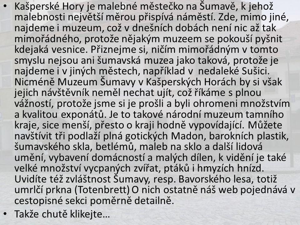 Kašperské Hory je malebné městečko na Šumavě, k jehož malebnosti největší měrou přispívá náměstí. Zde, mimo jiné, najdeme i muzeum, což v dnešních dobách není nic až tak mimořádného, protože nějakým muzeem se pokouší pyšnit kdejaká vesnice. Přiznejme si, ničím mimořádným v tomto smyslu nejsou ani šumavská muzea jako taková, protože je najdeme i v jiných městech, například v nedaleké Sušici. Nicméně Muzeum Šumavy v Kašperských Horách by si však jejich návštěvník neměl nechat ujít, což říkáme s plnou vážností, protože jsme si je prošli a byli ohromeni množstvím a kvalitou exponátů. Je to takové národní muzeum tamního kraje, sice menší, přesto o kraji hodně vypovídající. Můžete navštívit tři podlaží plná gotických Madon, barokních plastik, šumavského skla, betlémů, maleb na sklo a další lidová umění, vybavení domácností a malých dílen, k vidění je také velké množství vycpaných zvířat, ptáků i hmyzích hnízd. Uvidíte též zvláštnost Šumavy, resp. Bavorského lesa, totiž umrlčí prkna (Totenbrett) O nich ostatně náš web pojednává v cestopisné sekci poměrně detailně.