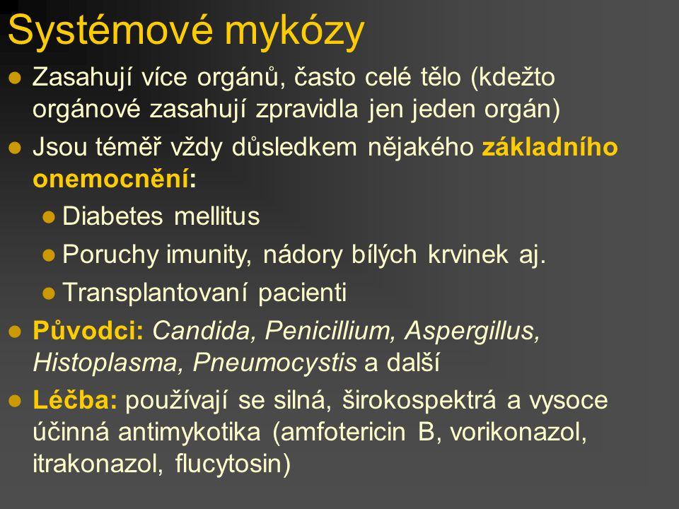 Systémové mykózy Zasahují více orgánů, často celé tělo (kdežto orgánové zasahují zpravidla jen jeden orgán)
