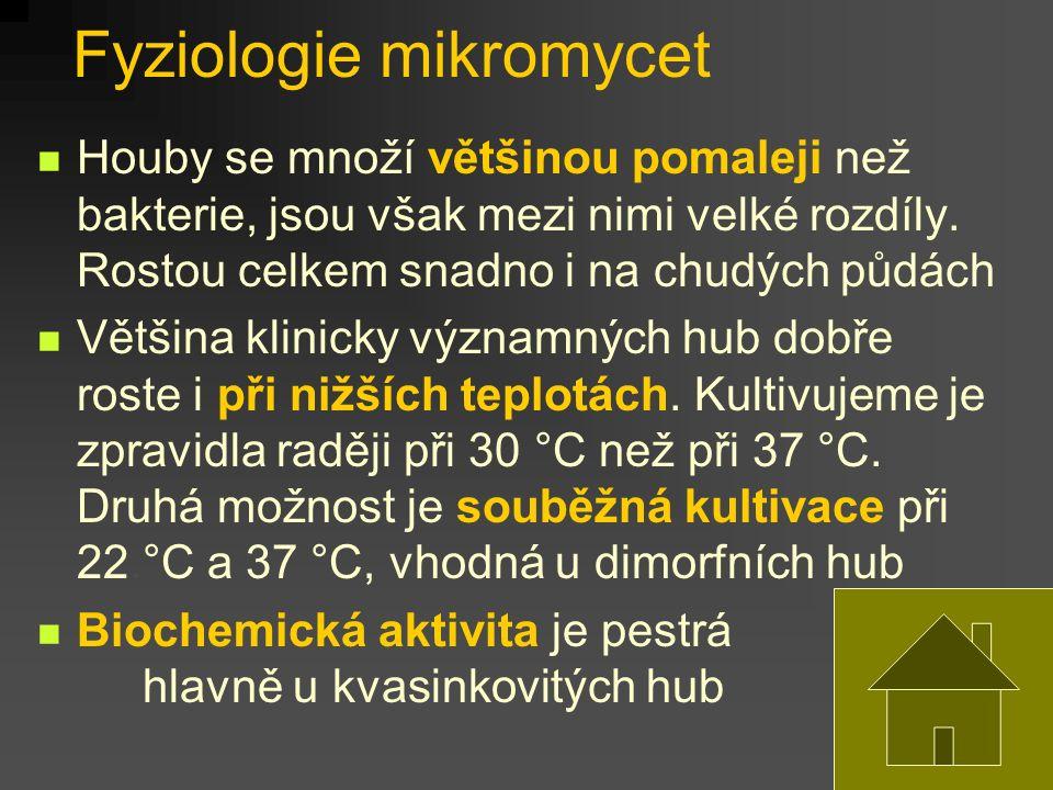 Fyziologie mikromycet