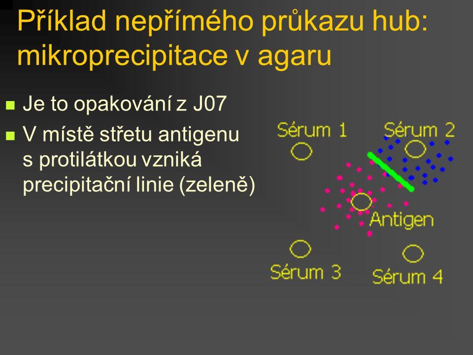 Příklad nepřímého průkazu hub: mikroprecipitace v agaru
