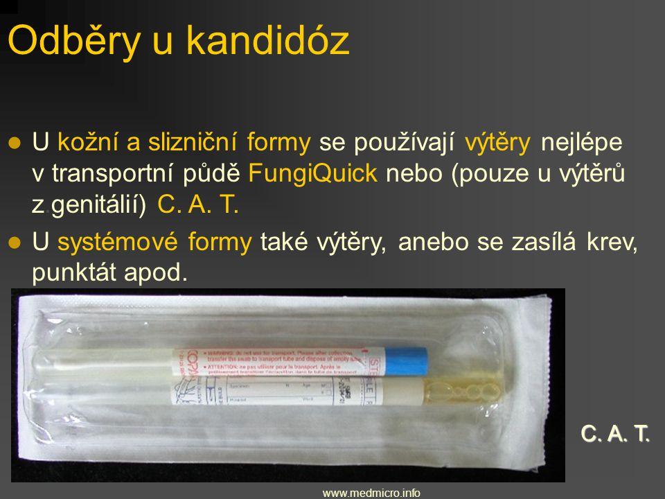 Odběry u kandidóz U kožní a slizniční formy se používají výtěry nejlépe v transportní půdě FungiQuick nebo (pouze u výtěrů z.genitálií) C. A. T.