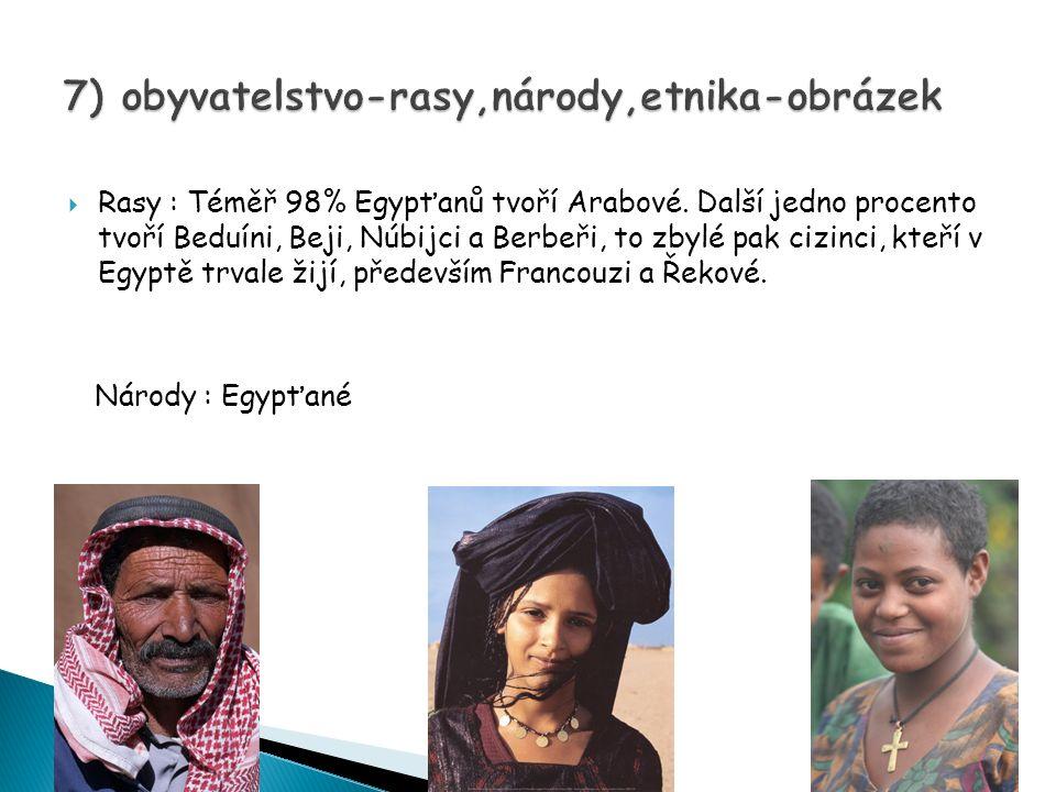 7) obyvatelstvo-rasy,národy,etnika-obrázek