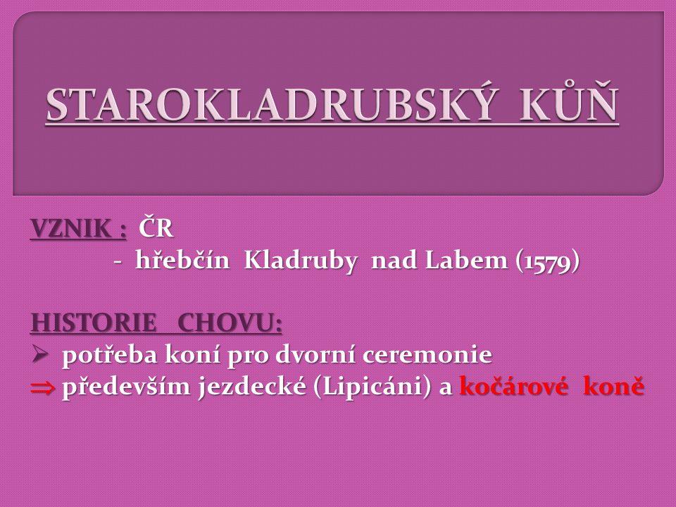- hřebčín Kladruby nad Labem (1579)