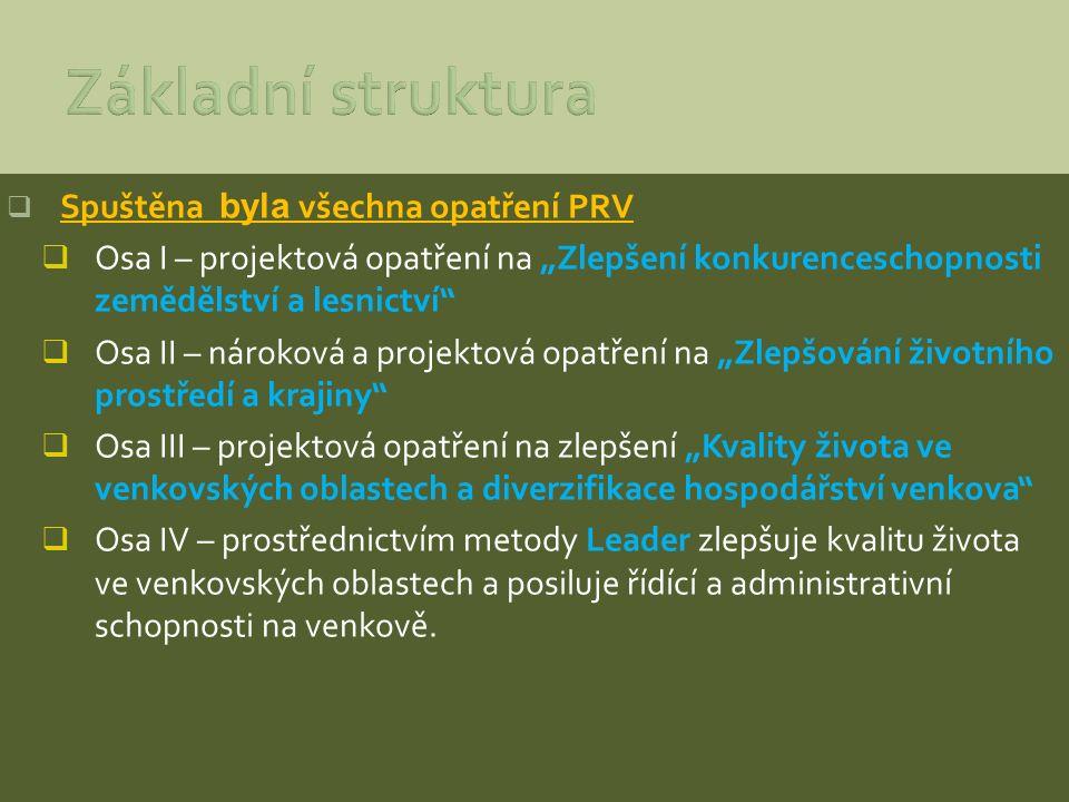 Základní struktura Spuštěna byla všechna opatření PRV