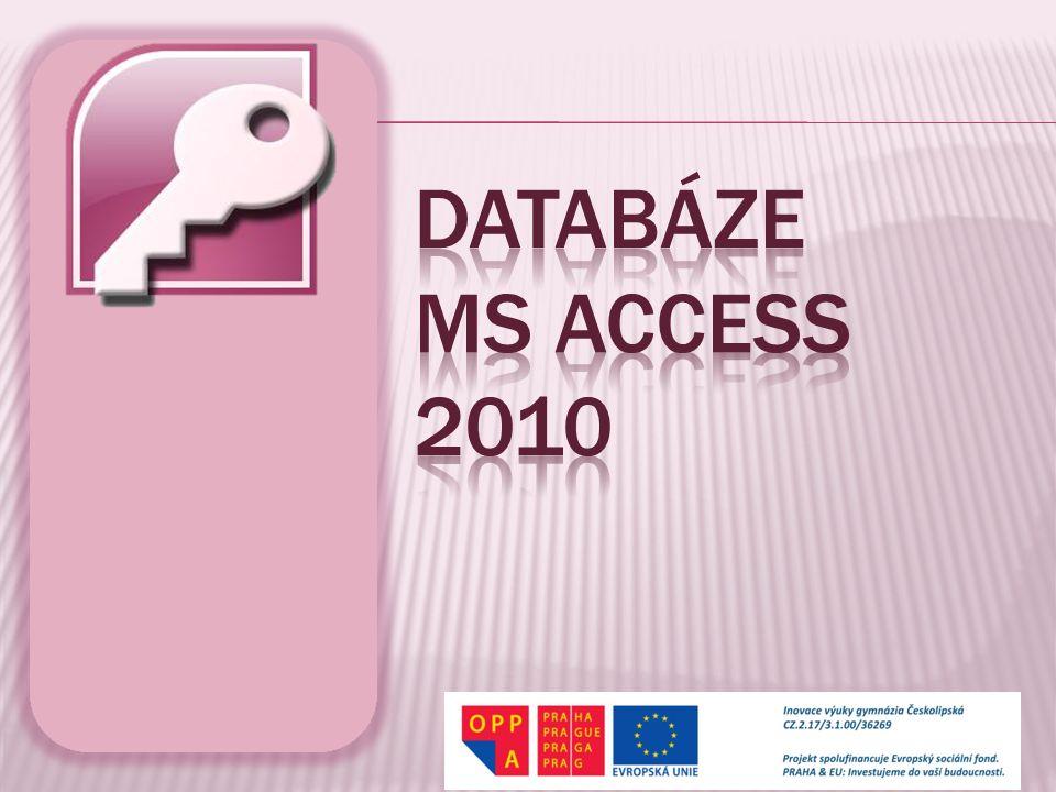 Databáze MS ACCESS 2010