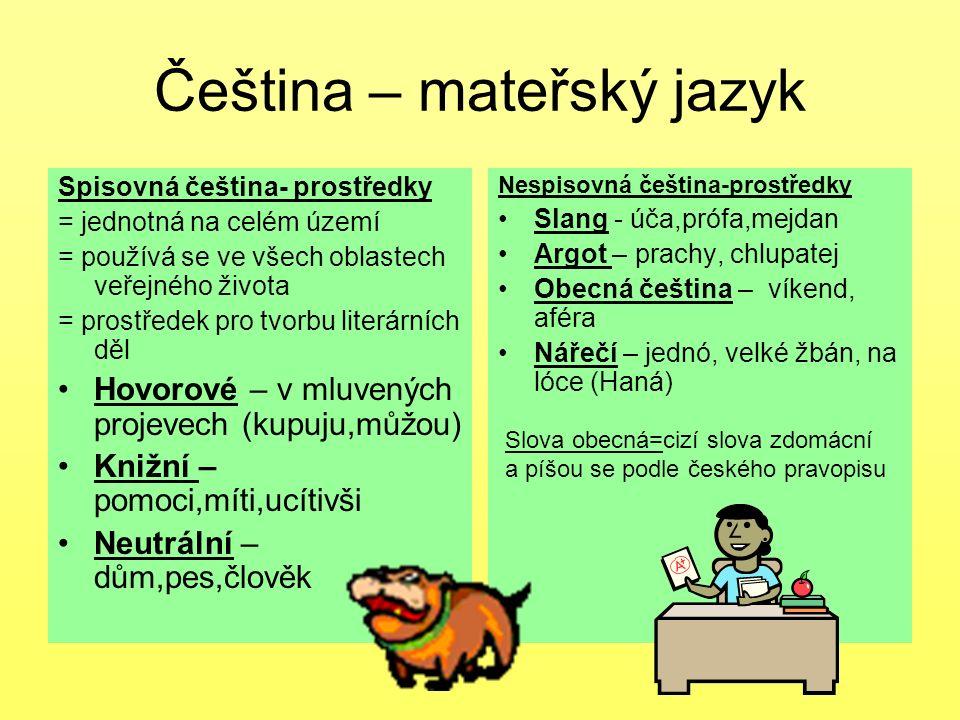 Čeština – mateřský jazyk