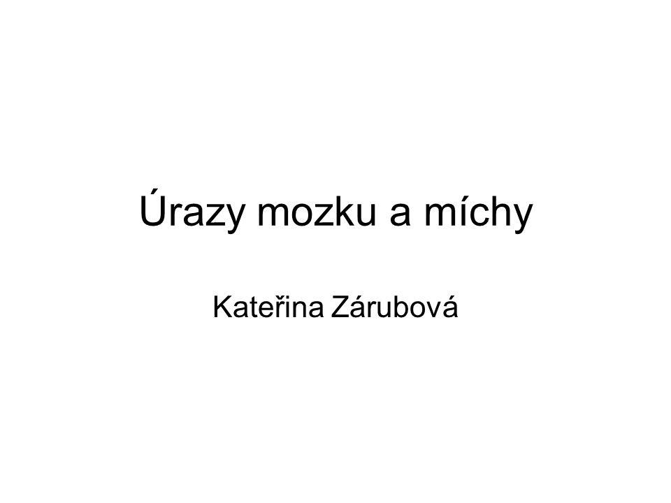 Úrazy mozku a míchy Kateřina Zárubová