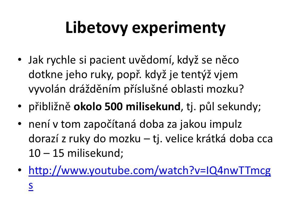 Libetovy experimenty