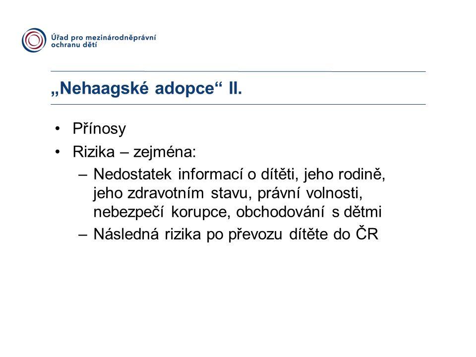 """Nehaagské adopce II. Přínosy Rizika – zejména:"