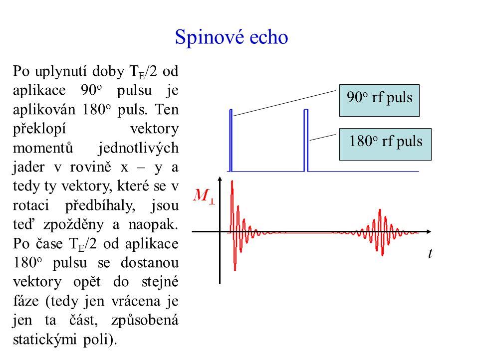 Spinové echo