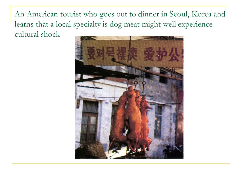 An American tourist who goes out to dinner in Seoul, Korea and learns that a local specialty is dog meat might well experience cultural shock