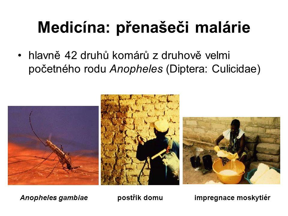 Medicína: přenašeči malárie