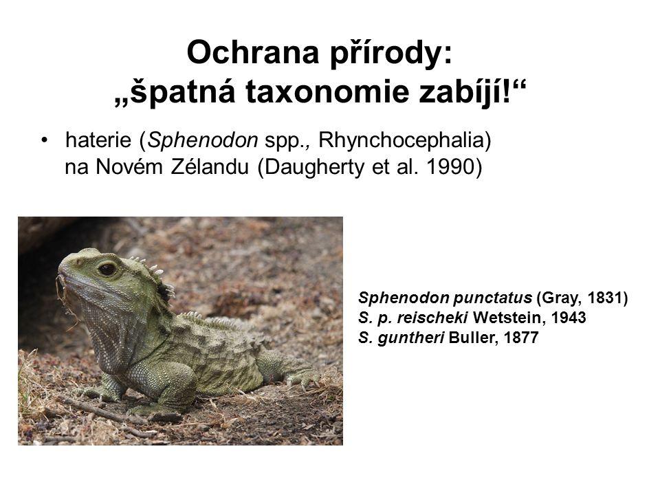 """Ochrana přírody: """"špatná taxonomie zabíjí!"""