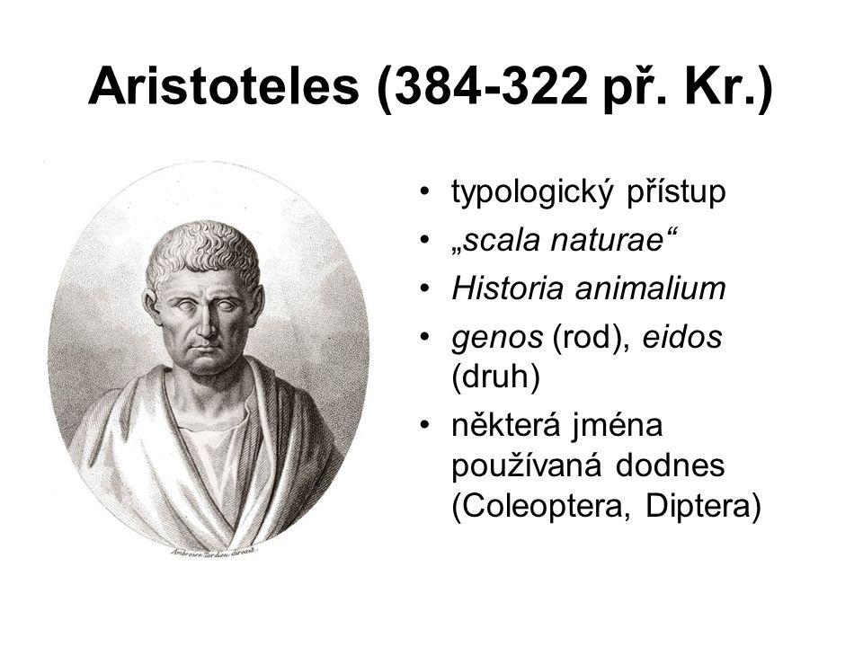 """Aristoteles (384-322 př. Kr.) typologický přístup """"scala naturae"""