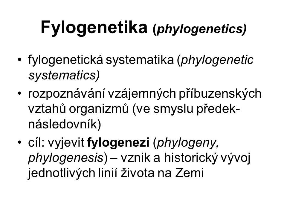 Fylogenetika (phylogenetics)