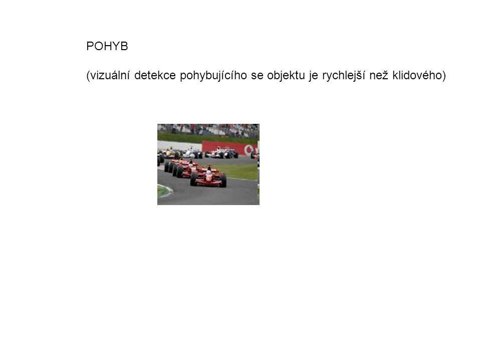 POHYB (vizuální detekce pohybujícího se objektu je rychlejší než klidového)
