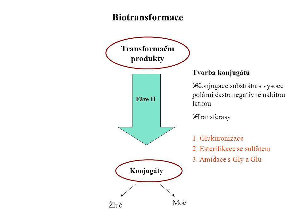 Transformační produkty