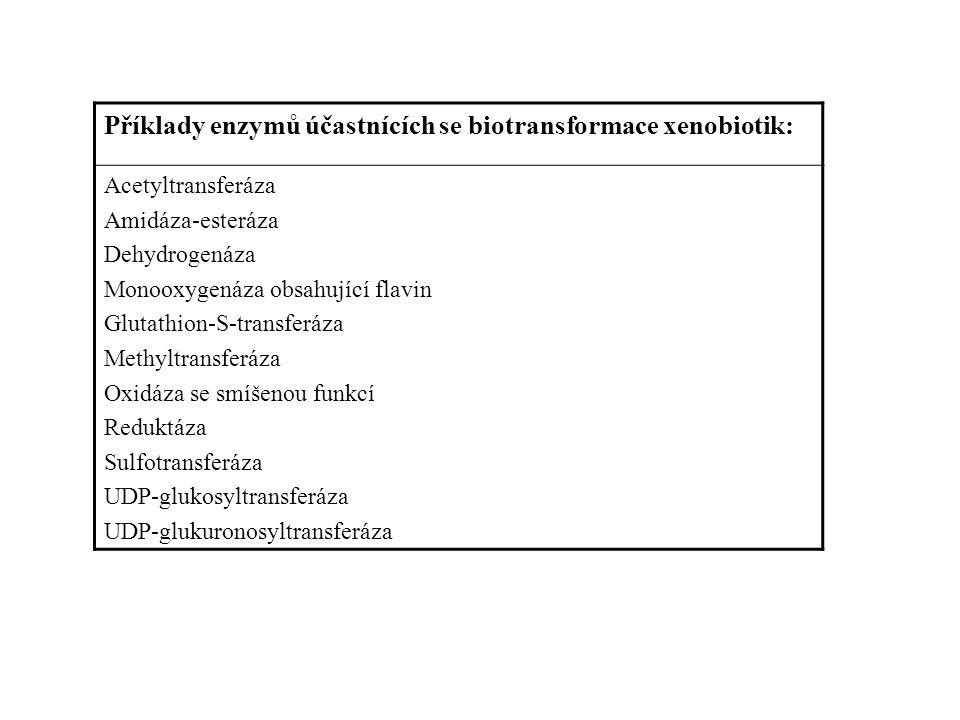 Příklady enzymů účastnících se biotransformace xenobiotik: