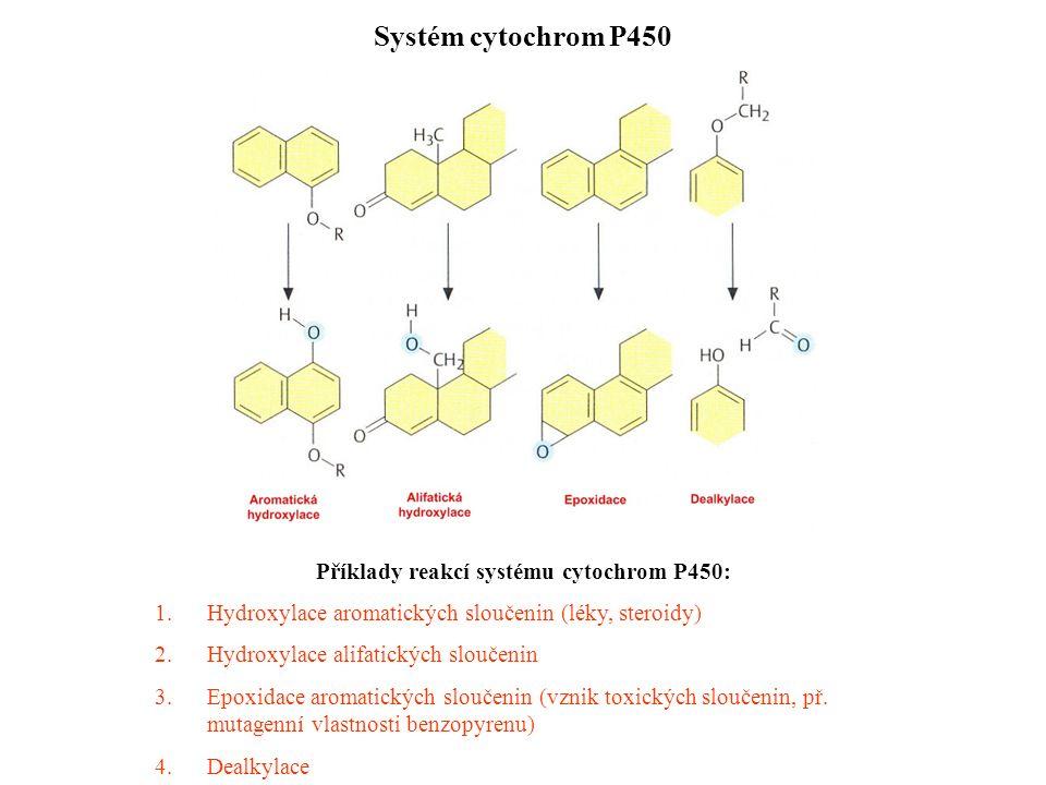 Příklady reakcí systému cytochrom P450: