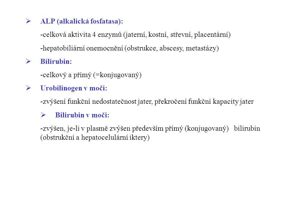 ALP (alkalická fosfatasa):