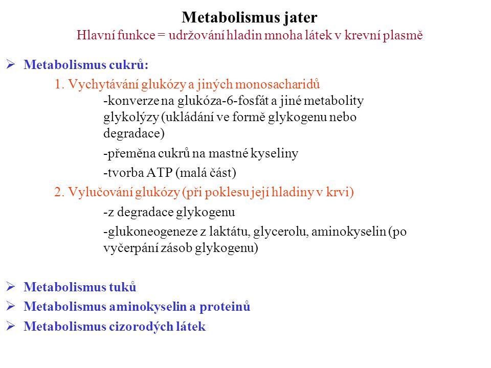 Metabolismus jater Hlavní funkce = udržování hladin mnoha látek v krevní plasmě