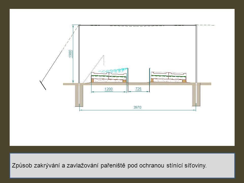 Způsob zakrývání a zavlažování pařeniště pod ochranou stínící síťoviny.