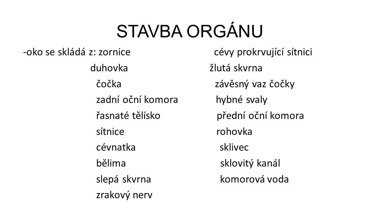 STAVBA ORGÁNU