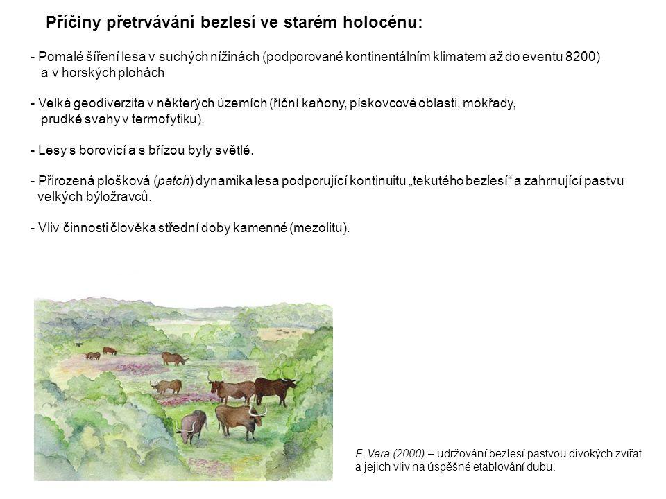 Příčiny přetrvávání bezlesí ve starém holocénu:
