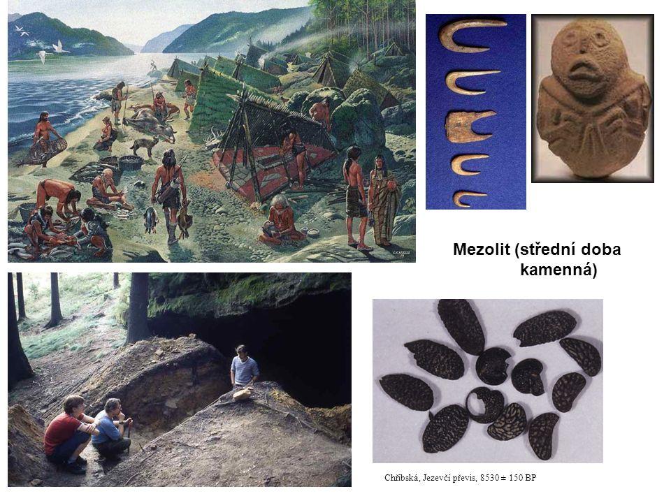 Mezolit (střední doba kamenná) 21