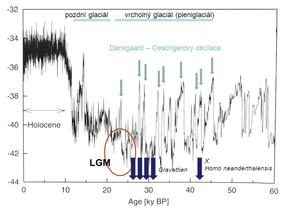 LGM pozdní glaciál vrcholný glaciál (pleniglaciál)