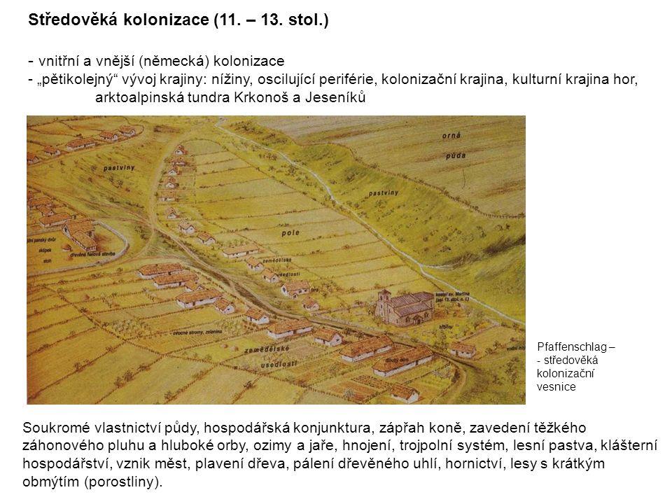 Středověká kolonizace (11. – 13. stol.)
