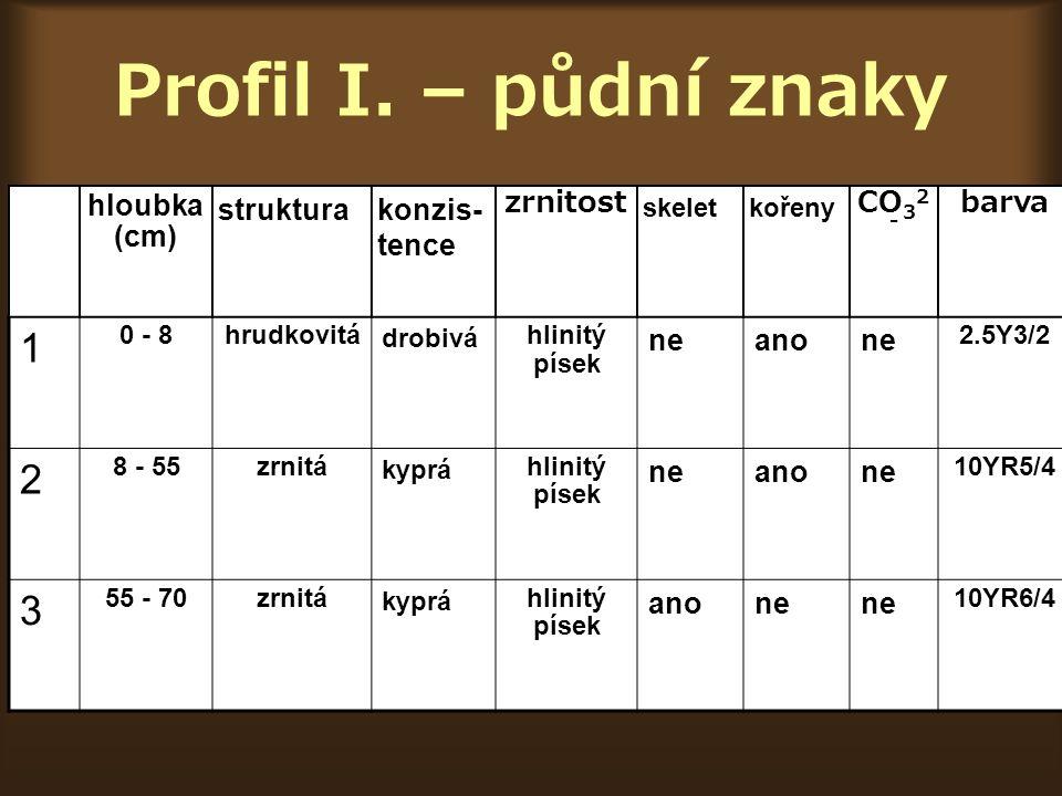 Profil I. – půdní znaky 1 2 3 hloubka (cm) struktura konzis- tence